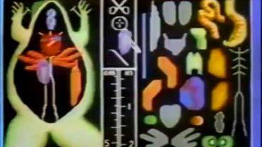 Apple II Ad mit Jenifer Graham – Frog (1987)